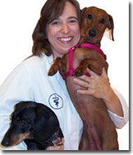 Dr. Tracy Lord - Alternative Veterinary Care