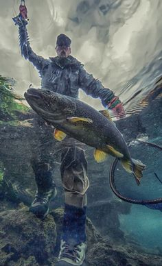 Netting a trout
