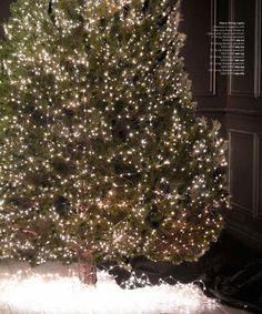 How To String Lights On A Christmas Tree Amazing 2013 Holiday Catalog  Restoration Hardware  Light Up  Pinterest Decorating Design