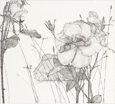 Art Hansen(American, b.1929)  Jul-75    1975    etching