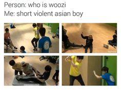 cute, funny, kpop, macro, pledis, seventeen, violent, jihoon, woozi, mingyu