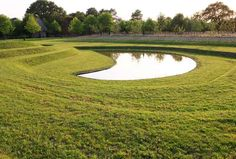 Ursel Borstell | Focus on garden - Fine Photography