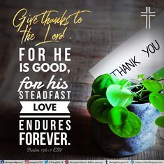 Give thanks to the Lord , for he is good, for his steadfast love endures forever. Psalm 136:1 ESV
