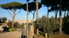 Vista del Colisseo desde el Palatino