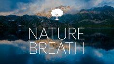 """Képtalálat a következőre: """"yoga nature breath"""""""