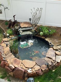 1000 images about tetrapond on pinterest beauty and the for 1000 gallon fish pond