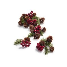 Holly Scatter ($8.36) ❤ liked on Polyvore featuring home, home decor, holiday decorations, christmas, christmas holiday decor, holiday home decor, pine cone home decor and sur la table