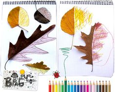Drawing the other half. I see this with magazine. I like it with the natural leaves. Very cool and tactile for kids