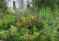 wildlife gardens - Google Search