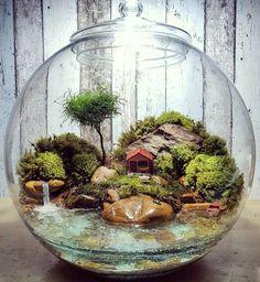 Home DECOR mini terrarium/waterfall