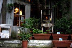 太陽カフェ/naoki oha