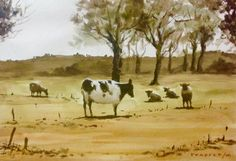 Cow - Watercolour