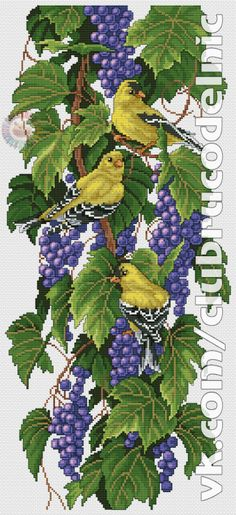 VK is the largest European social network with more than 100 million active users. Cross Stitch Fruit, Butterfly Cross Stitch, Cross Stitch Bird, Cross Stitch Animals, Cross Stitch Flowers, Cross Stitch Designs, Cross Stitching, Cross Stitch Patterns, Hand Embroidery Stitches