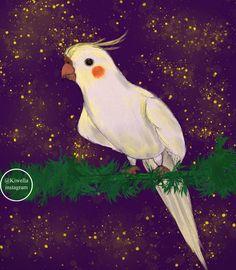 "Wella hatem (@kiwella) on Instagram: cockatiel bird ""My friend koky ❤😘 #sketch #bird #art #illustration #doodle #artstation #artistsoninstagram…"""