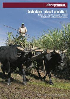 ---Gennaio 2013--- Sosteniamo i piccoli produttori. Mettiamo loro a disposizione supporti e strumenti  che migliorino le condizioni della produzione.