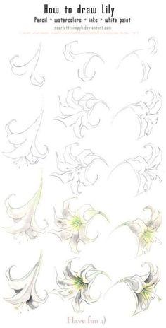 Fabulous Drawing On Creativity Ideas. Captivating Drawing On Creativity Ideas. Plant Drawing, Painting & Drawing, Watercolor Paintings, Drawing Sketches, Pencil Drawings, Art Drawings, Sketching, Sketch Art, Drawing Tips