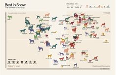 The World's Best Dogs, According To Math. #dogs #infographics