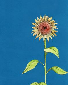Facebook illo challenge - Growth. We all lean towards the sun.... Watercolour and Dylusions paint. Love sunflowers!