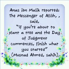 The Messenger, Save My Life, New Pins, Allah, Roots, Trees, Peace, God, Sayings