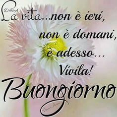 48 Melhores Imagens De Frases Em Italiano Thoughts Messages E Quote