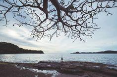 Back on the edge of the Pacific Ocean for the first time since Mazatlan Mexico. Gulf of Santa Elena Costa Rica. Just us an empty beach and a lone coatimundi for company. // #alaskatoargentina #bicycletouring #bikepacking#cyclinglife #pedalforever #exploretheworld#theglobewanderer #igtravel #roamtheplanet #staywild#getlost #optoutside #keepexploring #exploretocreate#travelphoto#lifeofadventure#intothewild#traveldeeper#everydaylatinamerica #costarica #beachcamp #bahiadesalinas