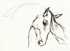 Horse Sketch in Acrylic by Angel Tarantella - #equine #art #horse #painting