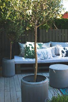 Een loungehoek van pallets in de tuin, met lekker veel kussentjes; olijfboom in pot [fotografie Fred Heiberg].
