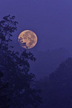 Blue Moon Rising Art Print by Rob Travis Blue Moon Rising, Moon Rise, Elfen Fantasy, Living In London, Moon Photography, Landscape Photography, Good Night Moon, Night Sky Moon, Night Aesthetic