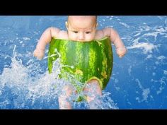 Try not to laugh challenge funny water fails - Hardest challenge version ever is a video about funny water fails.A few days we publish the videos that focuse. Vines Funny Videos, Best Funny Videos, Funny Vines, Viral Videos, Funny Kid Fails, Funny Baby Gif, Fun Funny, Hilarious, Funny Animal Vines