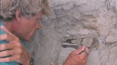 University of Alberta paleontologist Philip Currie excavates an ostrich-like dinosaur in Dinosaur Provincial Park, Alta. in Currie says modern techniques make it possible to determine with high precision what time period a dinosaur lived in. Dinosaur Discovery, Age Of Discovery, Dinosaurs Live, Dinosaur Museum, University Of Alberta, Spinosaurus, Prehistoric Creatures, G Adventures