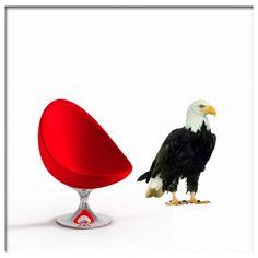 Muursticker adelaar eagle | Saynomorewebshop.nl