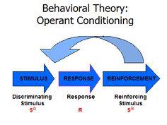 skinner behaviorism theory summary