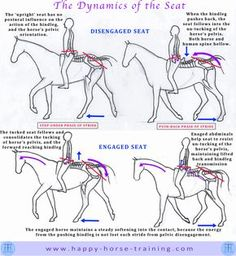 dressage diagrams give unique visual clarity to many important aspects of riding and training horses.HHT's dressage diagrams give unique visual clarity to many important aspects of riding and training horses. Horse Riding Tips, Horse Tips, Trail Riding, Horse Exercises, Horse And Human, Horse Anatomy, Horse Facts, Horse Camp, Dressage Horses