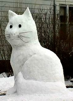 8 foot Snowcat...gonna do this the next big, wet snow.  Gotta do something to keep from hating it so much :)