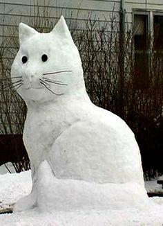 8 foot Snowcat