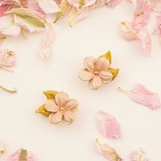 🌿🌸 The Cherry Blossom Studs 🌸🌿 True Beauty, Cherry Blossom, Studs, Hand Painted, Jewellery, Drawings, Spring, Painting, Inspiration