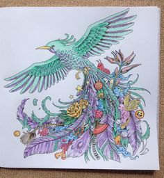Animorphia bird