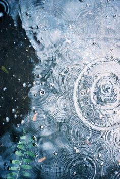rain drops on water I Love Rain, No Rain, Sound Of Rain, Singing In The Rain, Gota A Gota, Van Gogh Paintings, Rain Drops, Art Plastique, Oeuvre D'art
