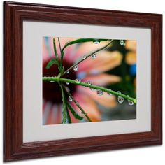 Trademark Fine Art Rain Worlds Canvas Art by Steve Wall, Wood Frame, Size: 16 x 20, Multicolor