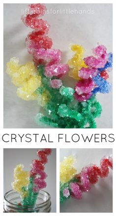 Make beautiful, sparkling crystal flower bouquets for Spring. Crystal flowers activity is also a suspension science experiment. Try crystal flowers science! Science Crafts, Science Fair Projects, Preschool Science, Science For Kids, Projects For Kids, Crafts For Kids, Science Art, Easy Science, Science Nature