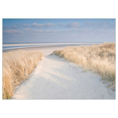 IKEA KATEBO Bild Ikea Inspiration, Acrylic Plastic, Am Meer, Beach Landscape, Reproduction, Home Wall Art, Seaside, Dune, Canvases