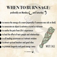 modern witch Sage information and facts. Saved for future reference. Relevant for new practitioners. Smudging Prayer, Sage Smudging, Burning Sage, Witchcraft For Beginners, Wicca For Beginners, Spiritual Cleansing, Sage Cleansing Prayer, Spiritual Health, Magick Spells