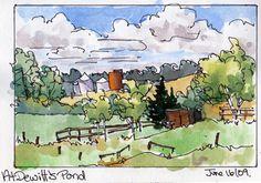 2013 plein air_at dewitts pond_watercolour by sharon lynn williams.jpg