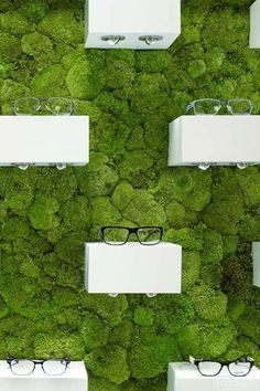 Trendstop - trend analysis for fashion and creative professionals #glasses