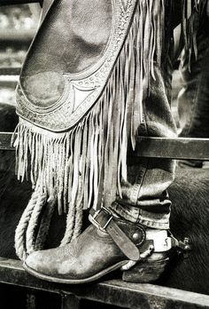 Boots and chaps, its cowboy hats, spurs and a lattigo. It's the ropes and the reins  And the joy and the pain  And they call the thing rodeo.