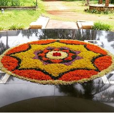 Rangoli Designs Flower, Flower Rangoli, Onam Pookalam Design, Flowers Decoration, Diwali Decorations, Interior Designing, Football Boots, Topiary, Kerala