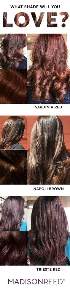Discover your most brilliant brunette hair color yet. So versatile, so universally flattering. From warm honey to dark chocolate, for all hair types, made with ingredients you can feel good about. Hair Color Pink, Hair Color For Black Hair, Cool Hair Color, Brown Hair Colors, Brilliant Brunette, Trendy Hairstyles, Hair Type, Curly Hair Styles, Hair Cuts