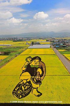 Rice field art in Inakadata, Hirosaki, Aomor, Japan Japanese Culture, Japanese Art, Japanese Landscape, Street Art, All About Japan, Aomori, Crop Circles, Land Art, Aerial View