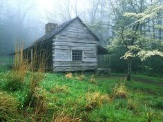 I love pretty little old, abandoned cabins.  Makes me think about who might have lived there and how they lived in such a harder but much simpler time.  Oh the stories this little cabin might tell!