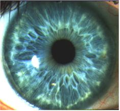 Close up of an Iris.   Iris Recognition Technology.   Iris Recognition is the process of identifying an individual by the unique pattern of their Iris, which is the coloured part around the pupil. It does this by taking a photo of the eye, and converting this to an Iris Code which is an encrypted digital template. http://www.aditech.co.uk